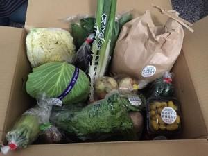 大量のお野菜!
